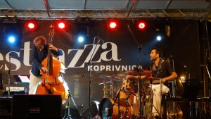 Fest Jazza 2016 (09). Foto: Dinko Husadžić Sansky (2016)