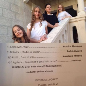 vesna-brac-brac-2016-14