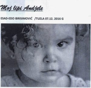 esad-edo-ibrisimovic-omot-600